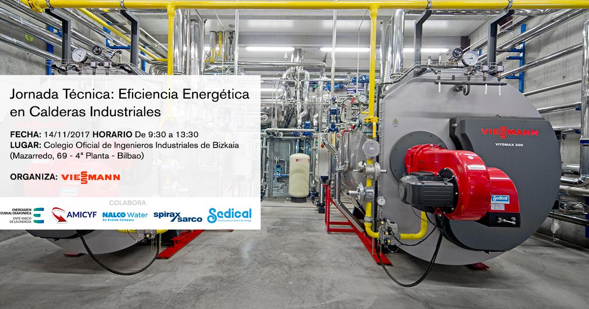 Eficiencia Energética en Calderas Industriales